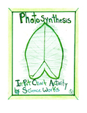 NGSS Pictorial Diagram Photosynthesis Lesson & Leaf Rubbing Activity