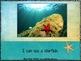 In the Deep Blue Sea – a bilingual emergent reader