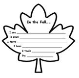 In the Fall 5 senses leaf
