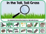 In the Tall, Tall, Grass Adapted  Book {SPED, Early Childhood, Autism}