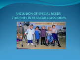 Including students with special needs