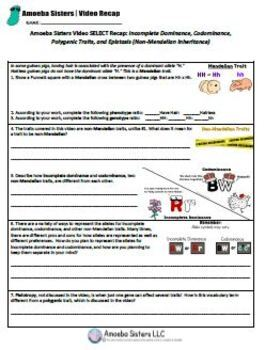 Incomplete Dom Codominance Select Recap Handout Answer Key By