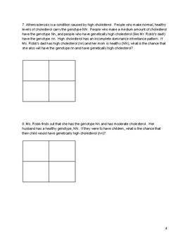 Incomplete Dominance Punnett Squares