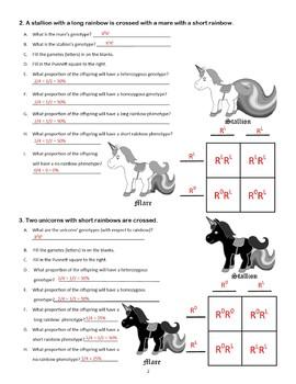 Incomplete Dominance Worksheet Blending Activity Black & White