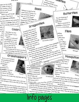 Incredible Insects! A Nonfiction Pack