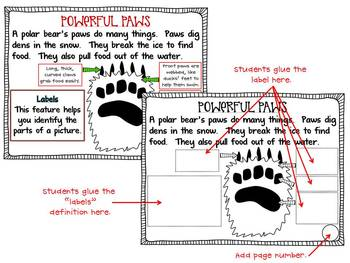 Incredible Polar Bears {Interactive Booklet on Nonfiction Text Features & More!}