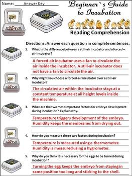 Incubation Packet Bundle