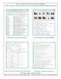 Indefinite Pronouns Interactive Spanish Combo Worksheet-Google Apps