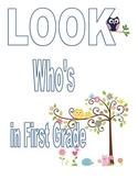 Independent First Grade Assessments