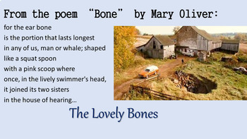 "Independent Novel ""Report"" Example Presentation with The Lovely Bones"