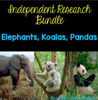 Independent Research Bundle: Koalas, Elephants, and Pandas