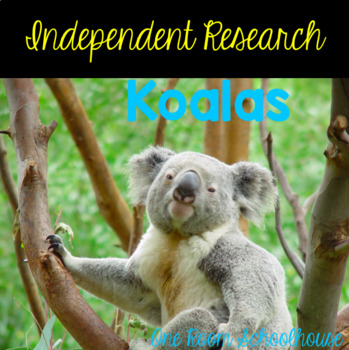 Independent Research: Koalas