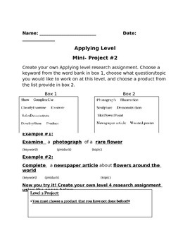 Independent Research Project