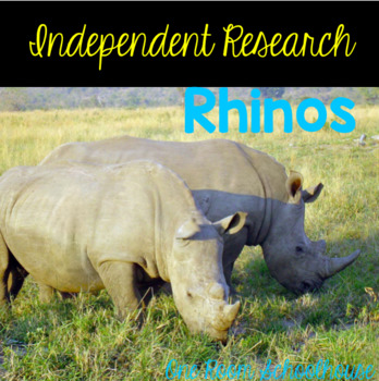 Independent Research: Rhinos