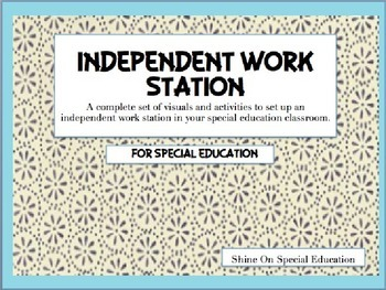 Independent Work Station for Special Education/Autism