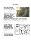 Index Fossils