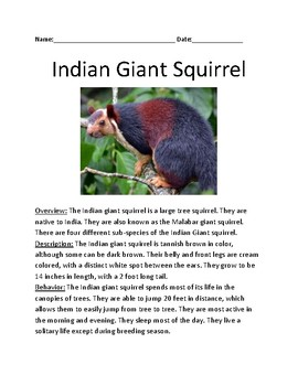 Indian Giant Squirrel - review article lesson information facts questions