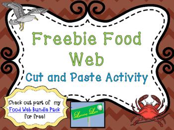 Freebie Food Web Activity