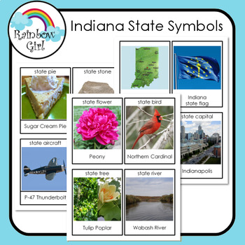 Indiana State Symbols Cards By Rainbow Girl Teachers Pay Teachers