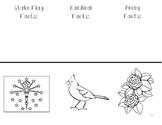 Indiana State Symbols Foldable