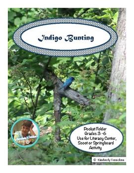 Indigo Bunting: Non-Fiction Literacy Center or Close Reading Pocket Folders