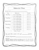Individual Behavior Plan
