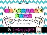 Individual Classroom Jobs {Bright Chevron}