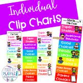 Individual Colorful Clip Charts