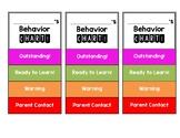 Individual Mini Behavior Charts