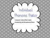 Individual Phoneme Card