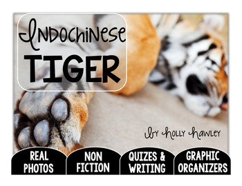 Indochinese Tiger-A Research Project