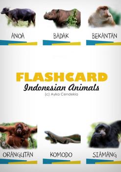Indonesian Animals