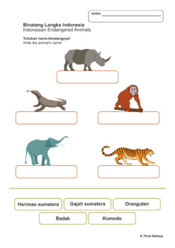 Indonesian Animals Worksheets NO PREP