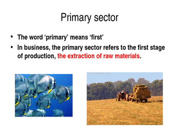 Industrial Sectors - Primary, Secondary & Tertiary Economic Sectors