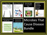 Microbes That Cause Disease Bundle