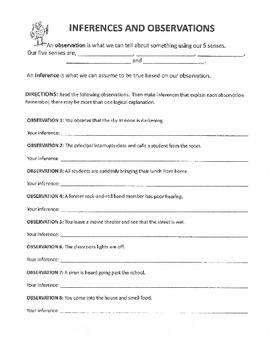 Inferences and Observation Worksheet