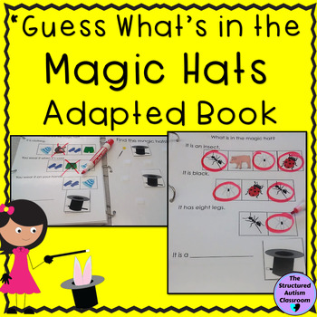 "Inferencing Adapted Book ""Magic"": Identify Pictures by Cat"