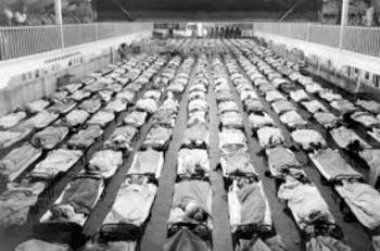 Influenza 1918: A Documentary Companion