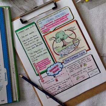Info-Jots Cycles of Matter (Water-Nitrogen-Carbon)