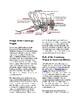 Info Reading Text - Westward Expansion: The Conestoga Wagon (no prep/sub)