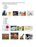 Infographie: 10 habitudes pour devenir plus intelligent