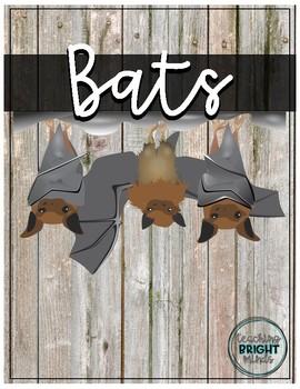 Information Bat Unit K-2 Centers included