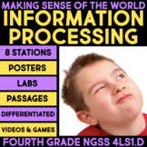 Information Processing: Making Sense of the World - Science Stations 4th Grade