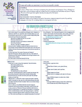 Information Processing - STEM Lesson Plan with Journal Page