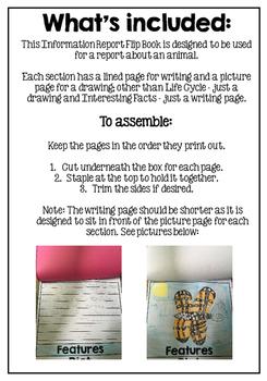 Information Report Flip Book