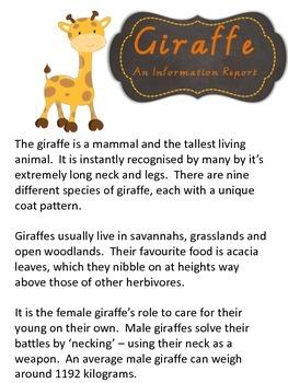 Information Report Pack - Giraffe