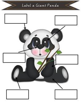 Information Report Pack - Panda