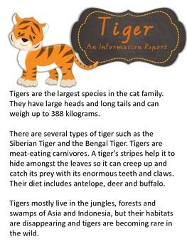 Information Report Pack - Tiger