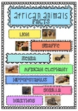 Information Reports African Animal Fact Cards
