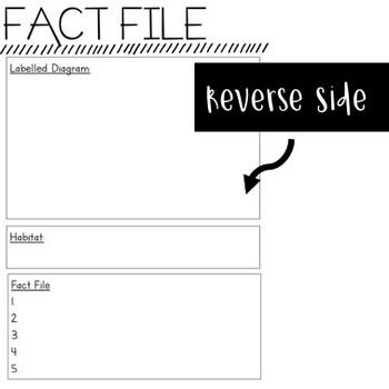 Information Text - FACT FILE BUNDLE!